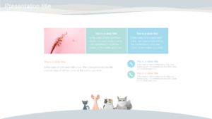Cat animal ppt backgrounds