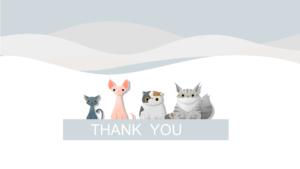 Thank you Petshop