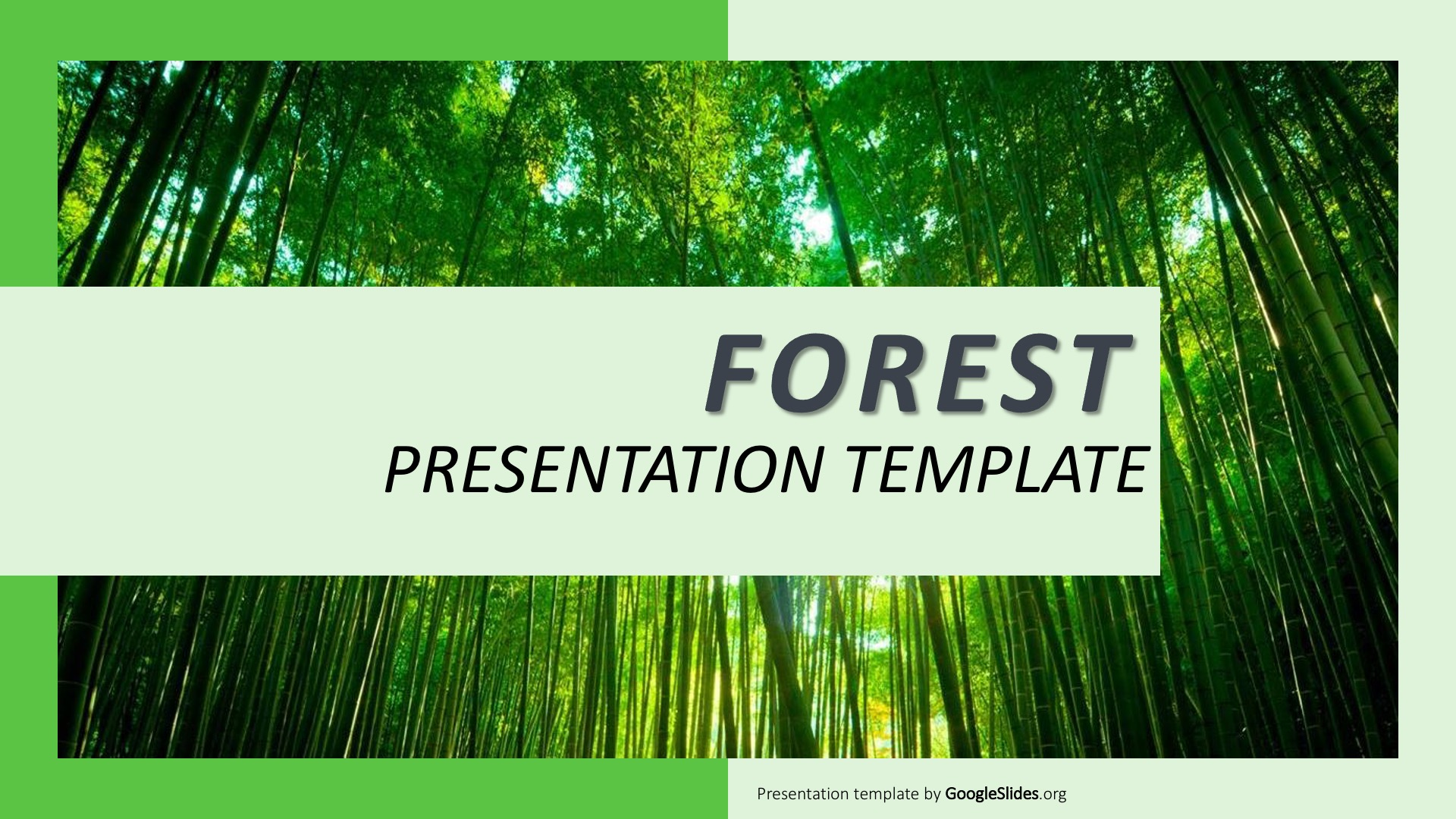 Forest PPT Template